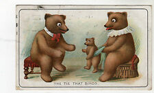 Teddy Bear - Art Postcard 1910