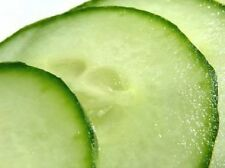 200 MARKETMORE 76 SLICING CUCUMBER Seeds *Gift&Comb S/H