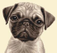 PUG dog puppy ~ complete counted cross stitch kit + all materials