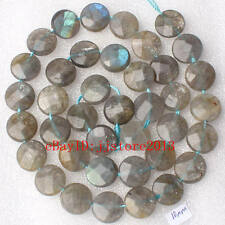 10mm Natural Faceted Coin Shape Gray Labradorite Gemstone Loose Beads Strand 15""