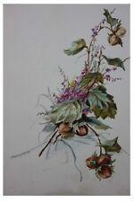 Haselnüsse und Wiesenblumen, Aquarell, um 1900