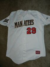Defunct 2016 Brevard County Manatees Game Used Jersey #29 Cy Sneed Brewers