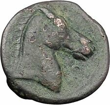Carthage in Zeugitana 300BC Tanit Cult & Horse  Rare Ancient Greek Coin  i47982