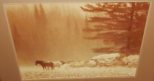 """WILLIAM PLANTE """"SNOW STALLIONS"""" LARGE SIGNED COLOR PHOTOGRAPH LISTED ARTIST"""