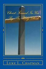 Christ Formed in You by the Holy Ghost by Luke Chapman (2012, Paperback)