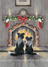 Border Collie, working Collie, Christmas cards pack of 10 by Paul Doyle. C453x