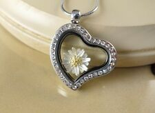 DAISY FLOWER CHARM ON large HEART GLASS LOCKET W/ S.STEEL GIFT NECKLACE
