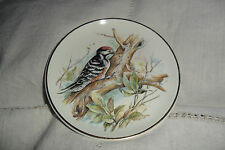 GREAT COLLECTABLE PRINKNASH POTTERY RED SPOTTED WOODPECKER PLATE signed ,17 cm