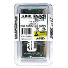1GB SODIMM Gateway M675 3501842 3501843 4000896 4000897 4000963 Ram Memory