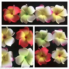 HAWAIIAN PLUMERIA FLOWER FOAM HAIR CLIPS  Mixed Colors