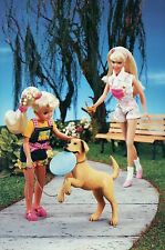 """ Frisbee Dog "" - Fashion Collectible Photo Card Mattel -- Barbie Doll Postcard"