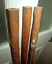 """3 CHESTNUT WOOD SHANKS FOR STICK MAKING PEELED SOLID WOODEN BLANK FOR CANES 45"""""""