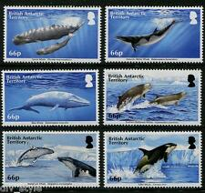 Whales set of 6 stamps mnh 2015 British Antarctic Territory