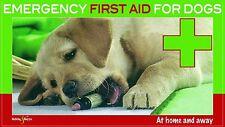 Emergency first aid for dogs - at home and away: Revised Edition, Martin Bucksch