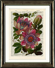 Antique book page art imprimé-vintage rose fleur de la passion dictionnaire wall art