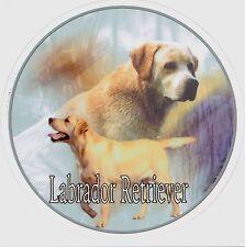 Design Aufkleber Labrador Retriever Retriver 2 gelb / blond 15 cm Autoaufkleber