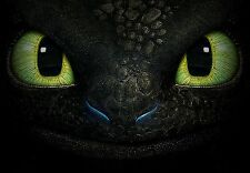 POSTER HOW TO TRAIN YOUR DRAGON TRAINER 2 SDENTATO TOOTHLESS  #6