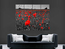FIELD OF RED POPPIES BLACK AND WHITE  GIANT WALL POSTER ART PICTURE PRINT LARGE
