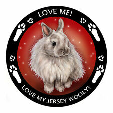 My Jersey Wooly Rabbit Is My Best Friend Dog Car Magnet