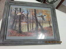 wood duck hunting picture framed and matted