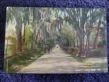 Early 1900's The Lovers' Lane in Ocala, FL Florida PC