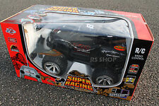 Huge Pro AX Race Expert Monster Truck 4x4 Cross Country R/C Car
