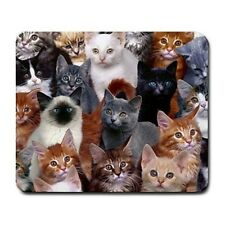 Cats Galore Mouse Pad MP982