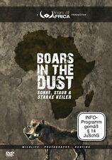 Boars in the Dust - Sonne, Staub und starke Keiler (Warzenschweine in Namibia)