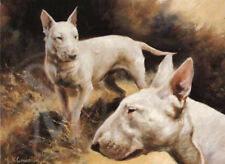 English Bull Terrier Dog Puppy Animal Painting Blank Birthday Fathers Day Card