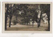 The Avenue Beccles 1910 RP Postcard