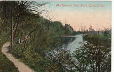 The River Ure & Bell Bank Wood, RIPON, Yorkshire