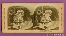 VUE STÉRÉO ANIMAUX : INSOLITE, LE CHAT DÉGUISÉ EN GRAND-MÈRE, CAT, 1897 -G2