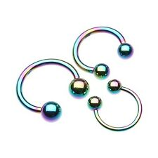 Horseshoe Barbell Rose Gold Silver Black Rainbow Blue Purple Green 18g 16g 14g