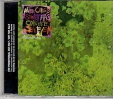 (CY345) Animal Collective, Water Curses - 2008 DJ CD