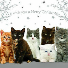 Kitten Christmas Cards Pack of 10 We Wish You a Merry Christmas Cute Xmas Cards