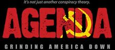 AGENDA: Grinding America Down • Award Winning Documentary, on plain DVD-R