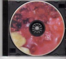 (DN521) Synesthesia, Hands - 2013 DJ CD