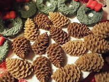 AWESOME PINE CONE WAX TART MELTS - YOUR CHOICE OF FRAGRANCE - 28 PCS