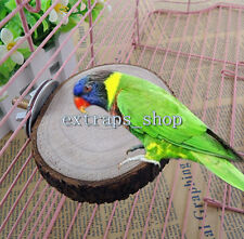 Round Wooden Coin Parrot Bird Cage Perches Stand Platform Pet Budgie Hanging Toy
