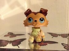 Littlest Pet Shop Collie rara #58