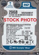 Western Digital Scorpio Blue WD2500BEVT 250GB 5400 RPM 8MB Cache SATA 3.0Gb/s 2.