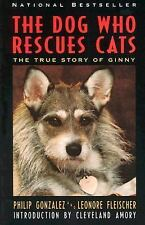 The Dog Who Rescues Cats: True Story of Ginny, The by Gonzalez, Philip