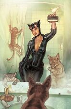 POSTER BATMAN THE DARK KNIGHT CAT WOMAN CATWOMAN SELINA DC VARIANT SELFIE COMICS