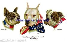 Wallace Robinson~WW1 Military~Pitbull,Bulldog,French Bulldog NEW Lg Note Cards