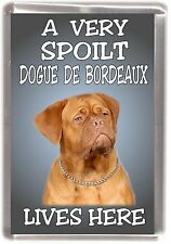 "Dogue de Bordeaux Dog Fridge Magnet ""A VERY SPOILT .... LIVES HERE"" by Starprint"