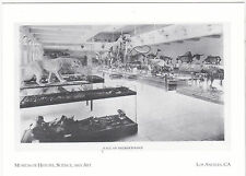 "*POSTCARD-""Museum of History, Science & Art""-opened 1913-Los Angeles, Ca. (#49)"