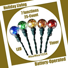 Multi Function LED Christmas String Lights with Timer Holiday Living - 25 Count