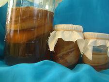 Two Organic Kombucha SCOBYs ~KIT  2 Quart Jars, Organic Sugar, Tea~
