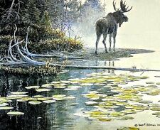 Moose at Waters Edge by Robert Bateman,18x22, Print, MINT PERFECT
