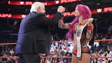Sasha Banks vs Charlotte WWE Divas 4x6 Raw in Charlotte NC Photo #26